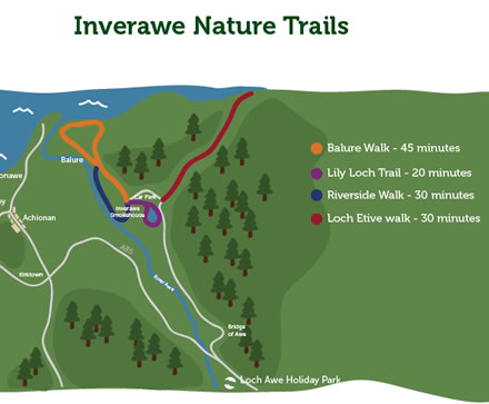 Inverawe nature trail, beside Loch Etive, Argyll